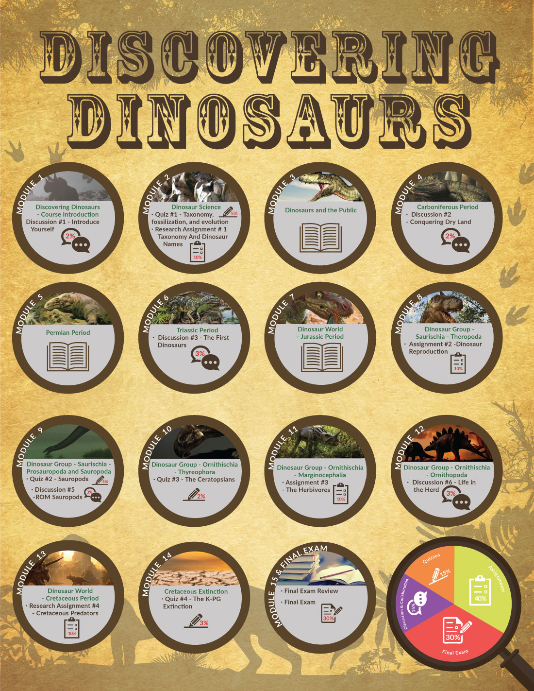 Discovering Dinosaurs infographic