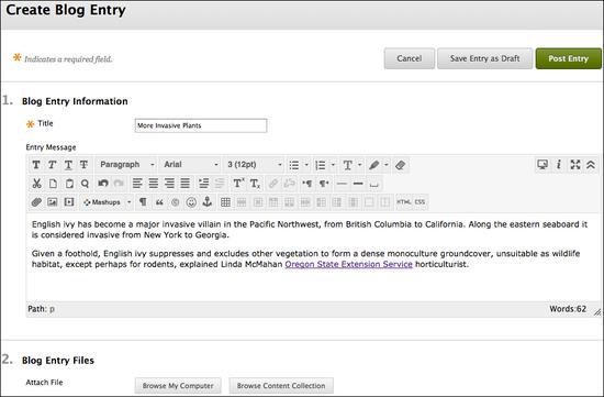 create blog screen shot