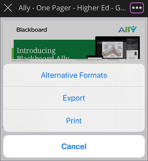 blackboard ally screen shot
