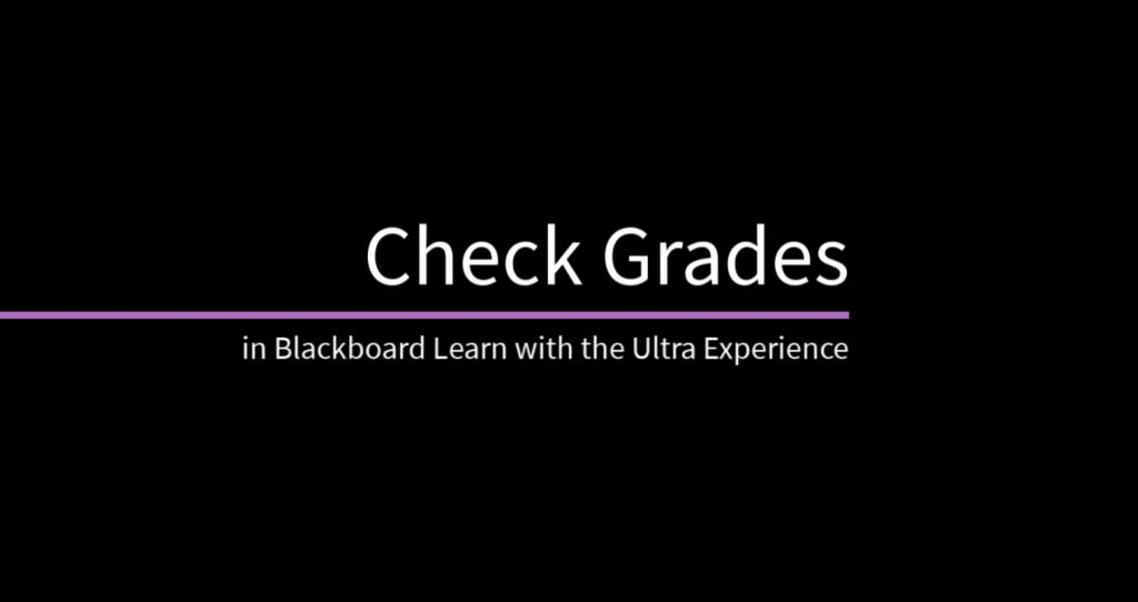 grade video placeholder image